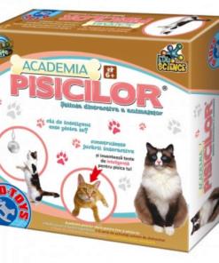 D-Toys - Joc creativ academia pisicilor