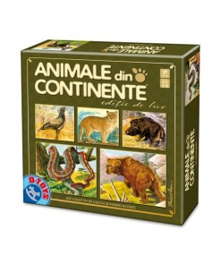 D-Toys - Animale din Continente Nr. 71767
