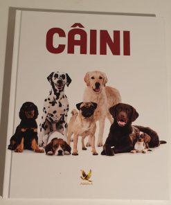 Caini, Editura Aquila