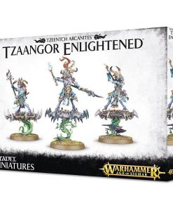 Warhammer Disciples of Tzeentch Tzaangor Enlightened