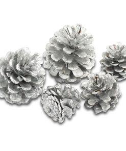 Meyco Decoratiuni Craciun Conuri de brad Argintii
