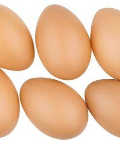 Ouă maro din plastic Andel Prerov 8cm 9992