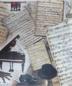 Arthur Rubinstein - Hartie de orez muzica ITD R409