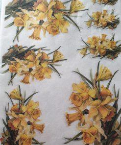 Narcise - Hartie de orez Flori ITD R419
