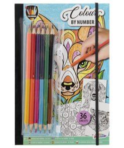 Carte de colorat cu creioane Grafix 150059