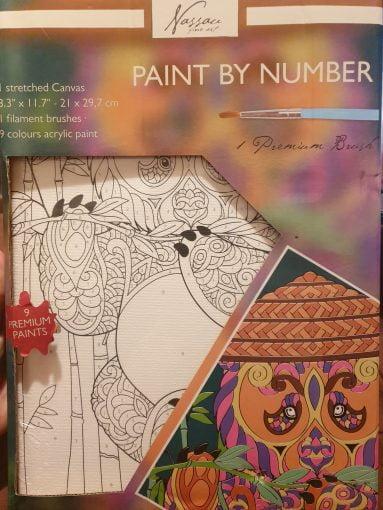 Set pictura pe numere Panda Art Sensations AR1019